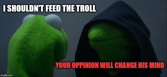Evil Kermit Meme | I SHOULDN'T FEED THE TROLL YOUR OPPINION WILL CHANGE HIS MIND | image tagged in memes,evil kermit | made w/ Imgflip meme maker