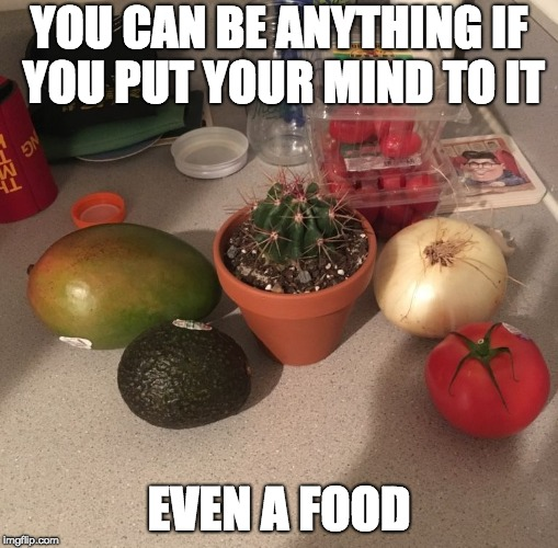 YOU CAN BE ANYTHING IF YOU PUT YOUR MIND TO IT EVEN A FOOD | image tagged in cactus vegetable | made w/ Imgflip meme maker