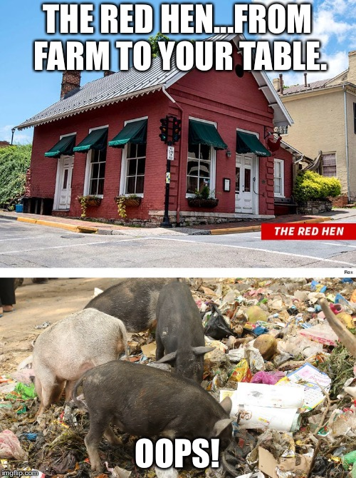 THE RED HEN...FROM FARM TO YOUR TABLE. OOPS! | image tagged in red hen | made w/ Imgflip meme maker