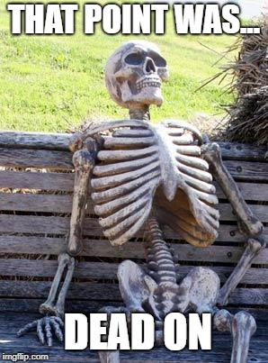 Waiting Skeleton Meme | THAT POINT WAS... DEAD ON | image tagged in memes,waiting skeleton | made w/ Imgflip meme maker