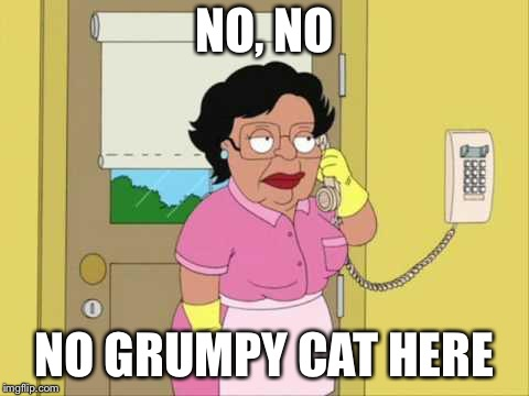 NO, NO NO GRUMPY CAT HERE | made w/ Imgflip meme maker