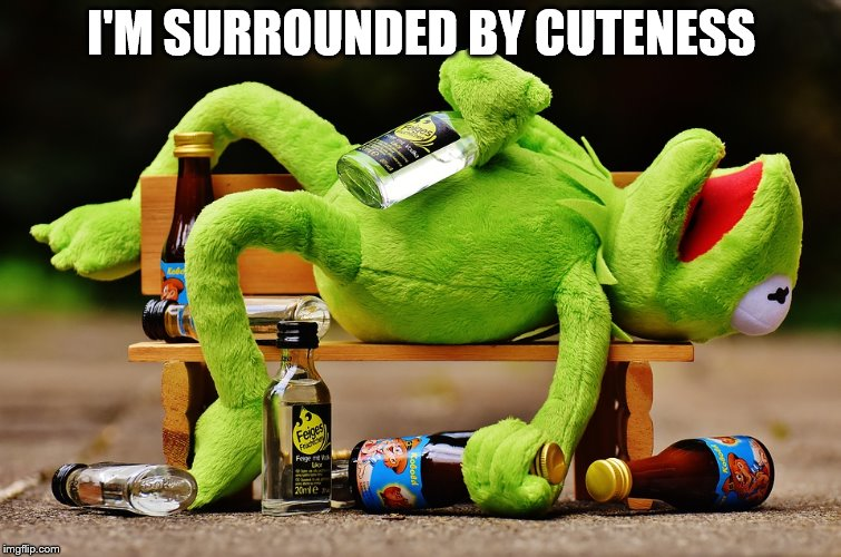 I'M SURROUNDED BY CUTENESS | made w/ Imgflip meme maker