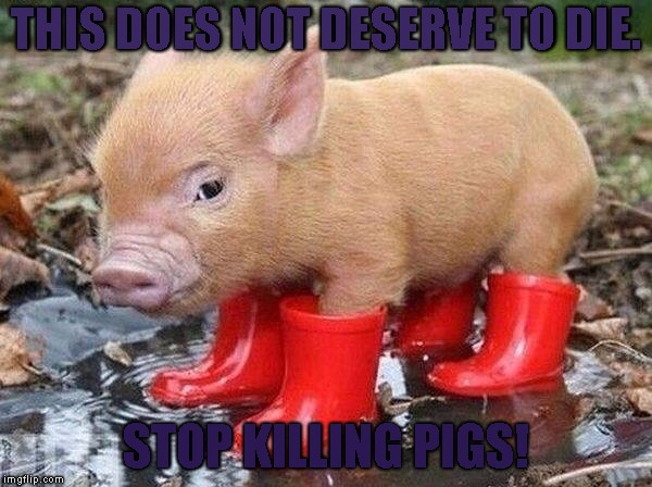 Pig In Boots | THIS DOES NOT DESERVE TO DIE. STOP KILLING PIGS! | image tagged in pig in boots | made w/ Imgflip meme maker