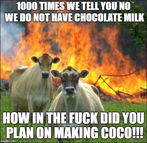 Evil Cows Meme | 1000 TIMES WE TELL YOU NO WE DO NOT HAVE CHOCOLATE MILK HOW IN THE F**K DID YOU PLAN ON MAKING COCO!!! | image tagged in memes,evil cows | made w/ Imgflip meme maker
