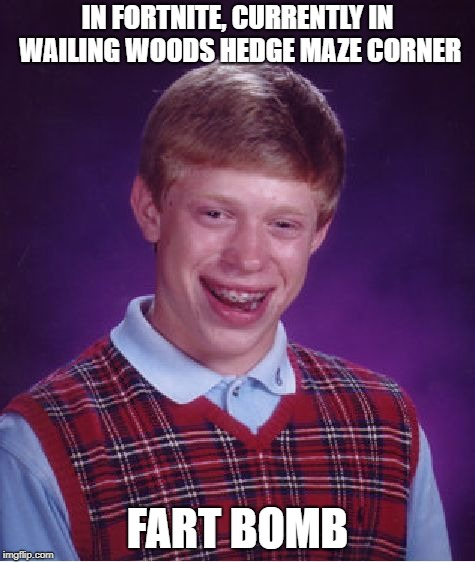 Bad Luck Brian Meme | IN FORTNITE, CURRENTLY IN WAILING WOODS HEDGE MAZE CORNER FART BOMB | image tagged in memes,bad luck brian | made w/ Imgflip meme maker