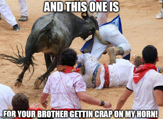 HOLY F&^&&CKIN OUCH!!!!! | AND THIS ONE IS FOR YOUR BROTHER GETTIN CRAP ON MY HORN! | image tagged in bull by the horn,crap,fror,your,brother | made w/ Imgflip meme maker