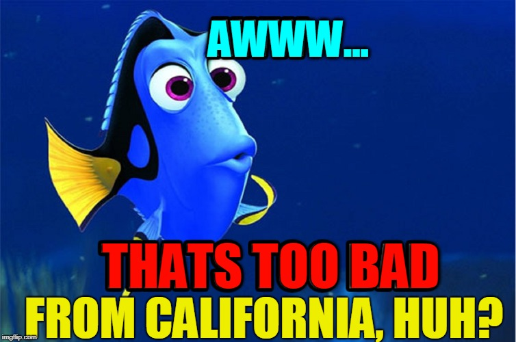 No Everyone can be from America | AWWW... THATS TOO BAD FROM CALIFORNIA, HUH? | image tagged in vince vance,california,hotel california,illegal immigrant,sanctuary cities,high cost of living | made w/ Imgflip meme maker