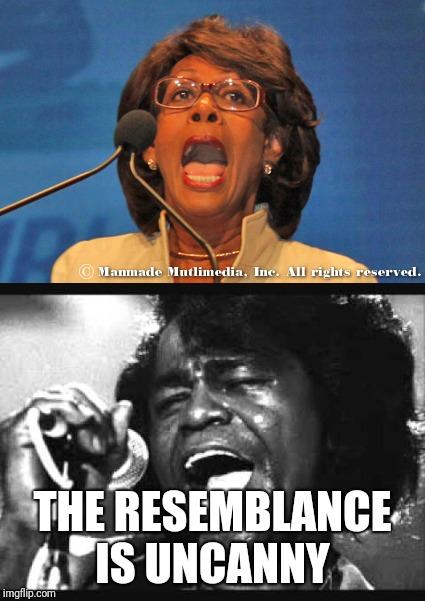 It's official: James Brown faked his own death and went into politics | THE RESEMBLANCE IS UNCANNY | image tagged in maxine waters | made w/ Imgflip meme maker