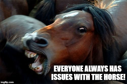 EVERYONE ALWAYS HAS ISSUES WITH THE HORSE! | made w/ Imgflip meme maker
