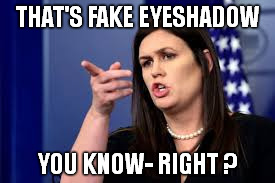 THAT'S FAKE EYESHADOW YOU KNOW- RIGHT ? | made w/ Imgflip meme maker