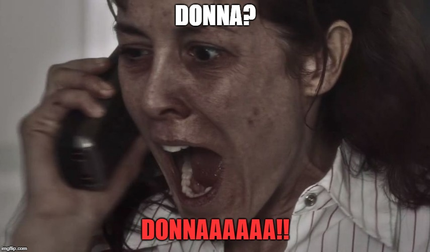 DONNA? DONNAAAAAA!! | image tagged in donna | made w/ Imgflip meme maker
