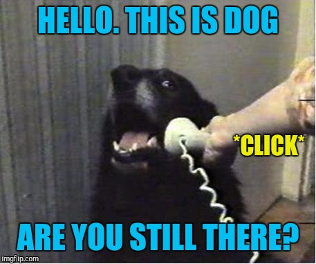 HELLO. THIS IS DOG ARE YOU STILL THERE? *CLICK* | made w/ Imgflip meme maker