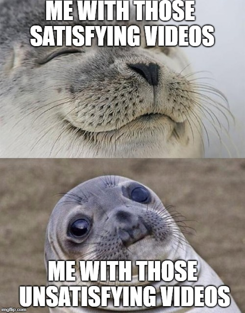 Short Satisfaction VS Truth Meme | ME WITH THOSE SATISFYING VIDEOS ME WITH THOSE UNSATISFYING VIDEOS | image tagged in memes,short satisfaction vs truth | made w/ Imgflip meme maker