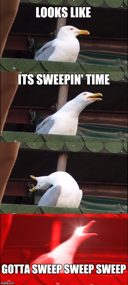 Inhaling Seagull Meme | LOOKS LIKE ITS SWEEPIN' TIME GOTTA SWEEP SWEEP SWEEP | image tagged in memes,inhaling seagull | made w/ Imgflip meme maker