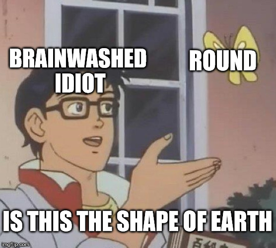 Is This A Pigeon Meme | BRAINWASHED IDIOT ROUND IS THIS THE SHAPE OF EARTH | image tagged in memes,is this a pigeon | made w/ Imgflip meme maker