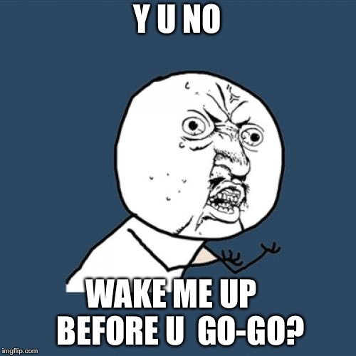 Y U No Meme | Y U NO WAKE ME UP   BEFORE U  GO-GO? | image tagged in memes,y u no | made w/ Imgflip meme maker