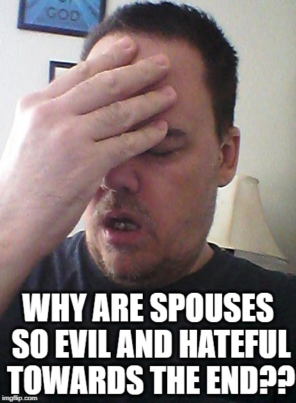 face palm | WHY ARE SPOUSES SO EVIL AND HATEFUL TOWARDS THE END?? | image tagged in face palm | made w/ Imgflip meme maker