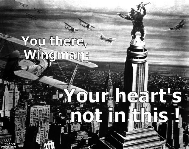king kong | You there, Wingman: Your heart's not in this ! | image tagged in king kong | made w/ Imgflip meme maker