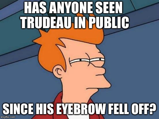 Hmmmmm | HAS ANYONE SEEN TRUDEAU IN PUBLIC SINCE HIS EYEBROW FELL OFF? | image tagged in memes,futurama fry,justin trudeau,politics,trump,canada | made w/ Imgflip meme maker