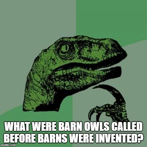 Philosoraptor Meme | WHAT WERE BARN OWLS CALLED BEFORE BARNS WERE INVENTED? | image tagged in memes,philosoraptor | made w/ Imgflip meme maker