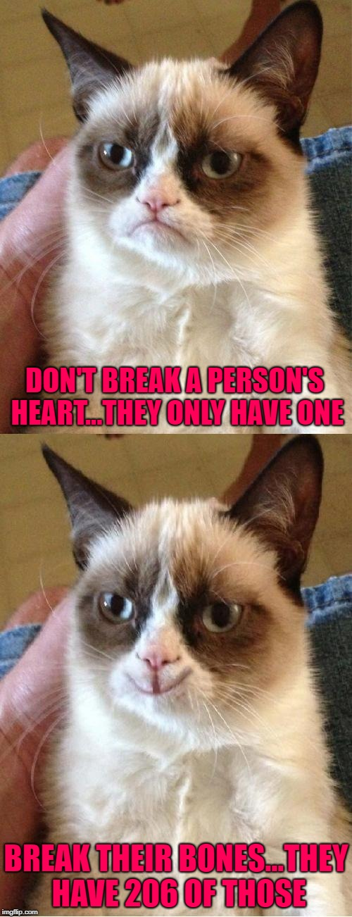 Maximize the pain...maximize the pleasure!!! | DON'T BREAK A PERSON'S HEART...THEY ONLY HAVE ONE BREAK THEIR BONES...THEY HAVE 206 OF THOSE | image tagged in grumpy cat 2x smile,memes,bone breaker,funny,bones,grumpy cat | made w/ Imgflip meme maker