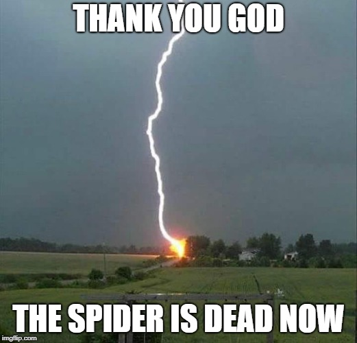thank you god | THANK YOU GOD THE SPIDER IS DEAD NOW | image tagged in lightning,god,spider | made w/ Imgflip meme maker