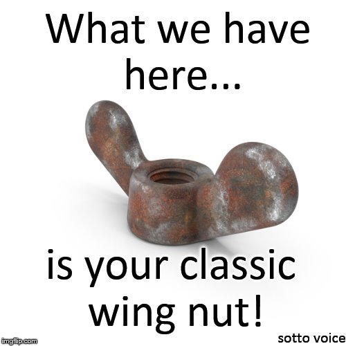 What we have here... sotto voice is your classic wing nut! | image tagged in wingnut | made w/ Imgflip meme maker