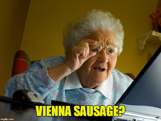 Grandma Finds The Internet Meme | VIENNA SAUSAGE? | image tagged in memes,grandma finds the internet | made w/ Imgflip meme maker