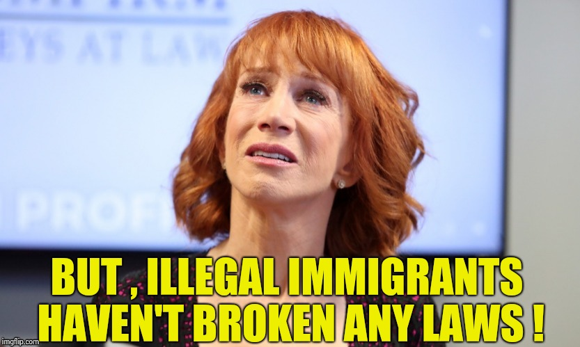 It was just a joke | BUT , ILLEGAL IMMIGRANTS HAVEN'T BROKEN ANY LAWS ! | image tagged in it was just a joke | made w/ Imgflip meme maker