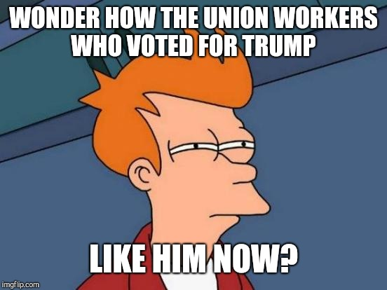 Futurama Fry | WONDER HOW THE UNION WORKERS WHO VOTED FOR TRUMP LIKE HIM NOW? | image tagged in memes,futurama fry,donald trump,supreme court,union | made w/ Imgflip meme maker