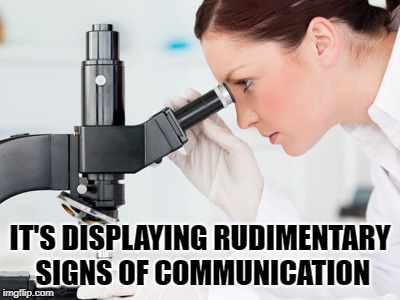 Scientist | IT'S DISPLAYING RUDIMENTARY SIGNS OF COMMUNICATION | image tagged in scientist microscope,communicate | made w/ Imgflip meme maker