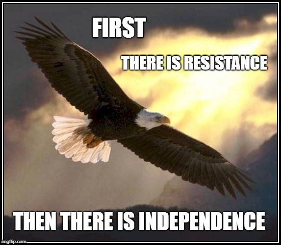 FIRST THEN THERE IS INDEPENDENCE THERE IS RESISTANCE | image tagged in independence,independence day,declaration of independence,4th of july,actual advice mallard | made w/ Imgflip meme maker