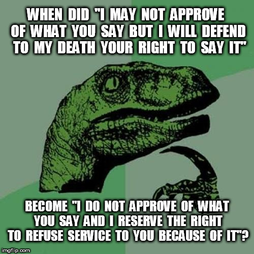 "Philosoraptor I may not approve | WHEN  DID  ""I  MAY  NOT  APPROVE  OF  WHAT  YOU  SAY  BUT  I  WILL  DEFEND  TO  MY  DEATH  YOUR  RIGHT  TO  SAY  IT"" BECOME  ""I  DO  NOT  AP 