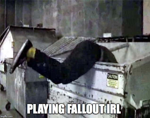 Dumpster Diving | PLAYING FALLOUT IRL | image tagged in dumpster,fallout,memes | made w/ Imgflip meme maker