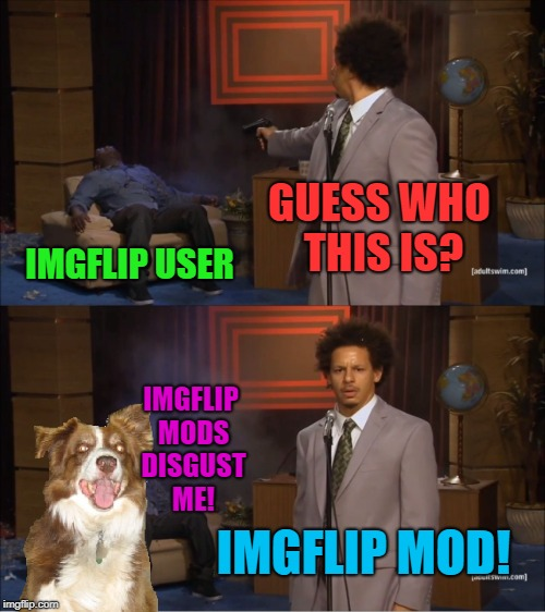 Who Killed Hannibal Meme | GUESS WHO THIS IS? IMGFLIP USER IMGFLIP MOD! IMGFLIP MODS DISGUST ME! | image tagged in memes,who killed hannibal,chili the border collie,dogs,border collie,imgflip mods | made w/ Imgflip meme maker