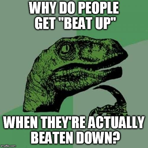 "Philosoraptor Meme | WHY DO PEOPLE GET ""BEAT UP"" WHEN THEY'RE ACTUALLY BEATEN DOWN? 