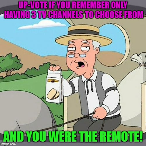 Do you remember ? |  UP-VOTE IF YOU REMEMBER ONLY HAVING 3 TV CHANNELS TO CHOOSE FROM; AND YOU WERE THE REMOTE! | image tagged in memes,pepperidge farm remembers,funny,remote control | made w/ Imgflip meme maker