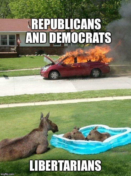 REPUBLICANS  AND DEMOCRATS LIBERTARIANS | image tagged in moose watching car fire | made w/ Imgflip meme maker