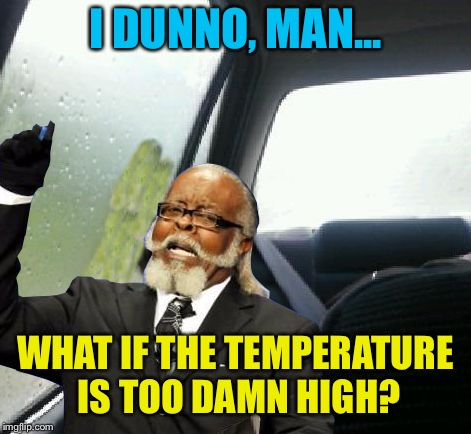 Introspective Too Damn High | I DUNNO, MAN... WHAT IF THE TEMPERATURE IS TOO DAMN HIGH? | image tagged in introspective too damn high | made w/ Imgflip meme maker