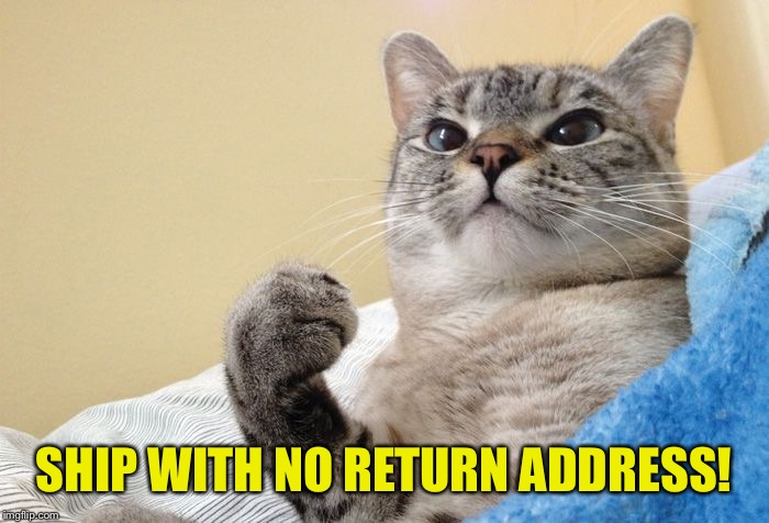 Success Cat #1 | SHIP WITH NO RETURN ADDRESS! | image tagged in success cat 1 | made w/ Imgflip meme maker