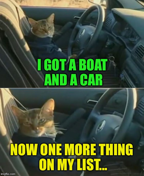 Boat Cat in Car | I GOT A BOAT AND A CAR NOW ONE MORE THING ON MY LIST... | image tagged in boat cat in car | made w/ Imgflip meme maker