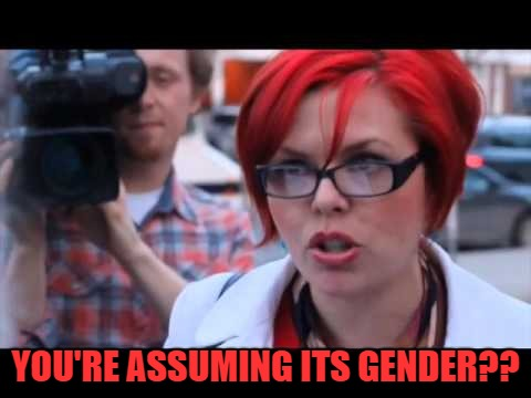 YOU'RE ASSUMING ITS GENDER?? | made w/ Imgflip meme maker