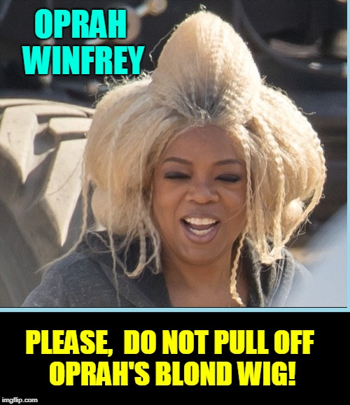 Blonds Have More Fun | OPRAH WINFREY PLEASE,  DO NOT PULL OFF          OPRAH'S BLOND WIG! | image tagged in vince vance,wigs,blond wigs,oprah winfrey,harpo,blonds have more fun | made w/ Imgflip meme maker