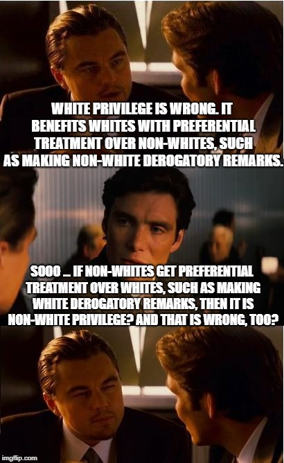 WHITE PRIVILEGE IS WRONG | WHITE PRIVILEGE IS WRONG. IT BENEFITS WHITES WITH PREFERENTIAL TREATMENT OVER NON-WHITES, SUCH AS MAKING NON-WHITE DEROGATORY REMARKS. SOOO  | image tagged in memes,inception | made w/ Imgflip meme maker