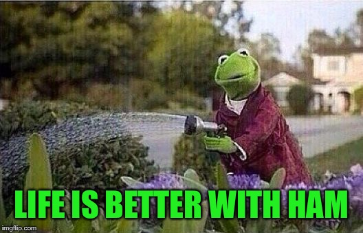 Kermit Watering Plants | LIFE IS BETTER WITH HAM | image tagged in kermit watering plants | made w/ Imgflip meme maker