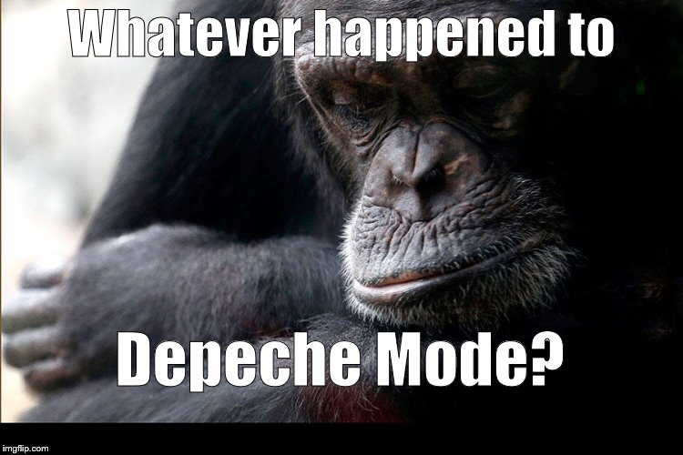 Koko | Whatever happened to Depeche Mode? | image tagged in koko | made w/ Imgflip meme maker