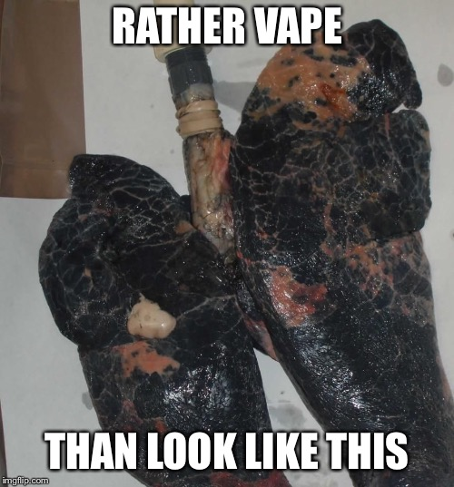 Smokers Lungs | RATHER VAPE THAN LOOK LIKE THIS | image tagged in smokers lungs | made w/ Imgflip meme maker