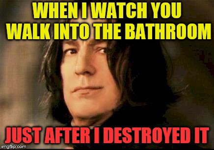 No warning given (A TidalRose request) | WHEN I WATCH YOU WALK INTO THE BATHROOM JUST AFTER I DESTROYED IT | image tagged in severus snape smirking,memes,bathroom humor,personal challenge | made w/ Imgflip meme maker