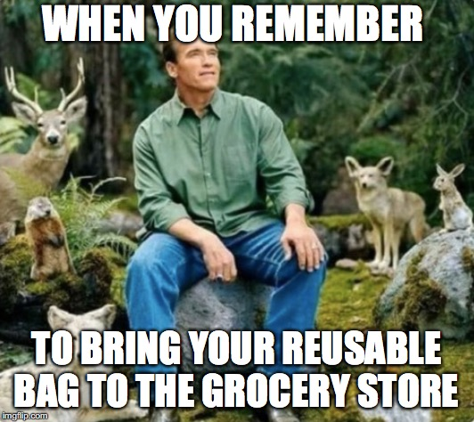 The most environmental friendly man in the world  | WHEN YOU REMEMBER TO BRING YOUR REUSABLE BAG TO THE GROCERY STORE | image tagged in memes,funny memes,funny,too funny,arnold schwarzenegger,environmental | made w/ Imgflip meme maker