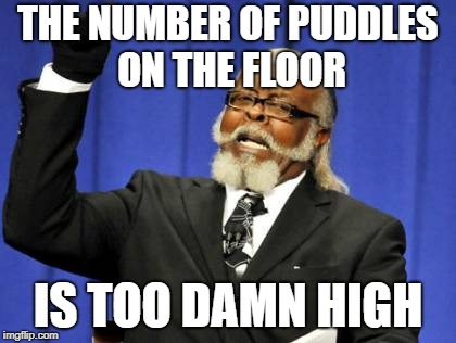 Too Damn High Meme | THE NUMBER OF PUDDLES ON THE FLOOR IS TOO DAMN HIGH | image tagged in memes,too damn high | made w/ Imgflip meme maker